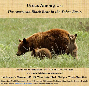 Ursus Among Us - Permanent  Exhibit