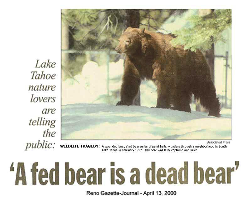 A fed bear is a dead bear